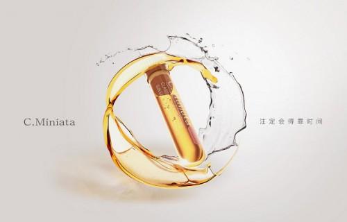 美歆然孵化的C.Miniata小棕瓶大火 风投坐不住了