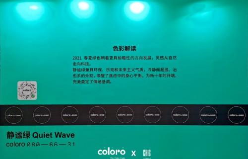 2020年CHIC深圳圆满落幕 COLORO创意呈现引领色彩浪潮