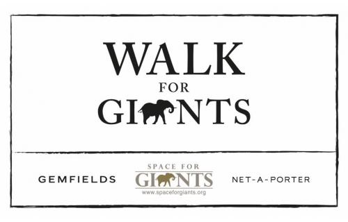 巨人空间宣布推出WalkForGiants慈善毅行公益活动